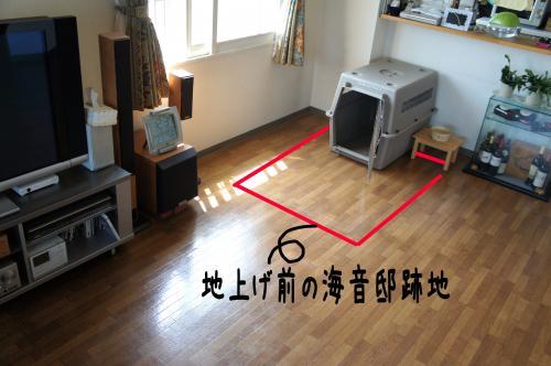 1_convert_20110731132330.jpg