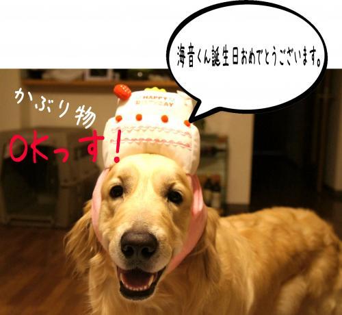 1_convert_20110809091012.jpg