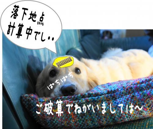 1_convert_20110924105528.jpg