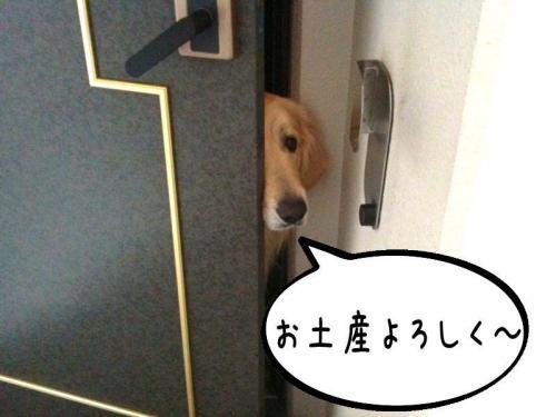 繧ォ繝・ご繝ウ3_convert_20110310161743