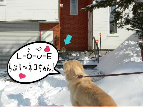 繧ォ繝・ご繝ウ6_convert_20110310162013
