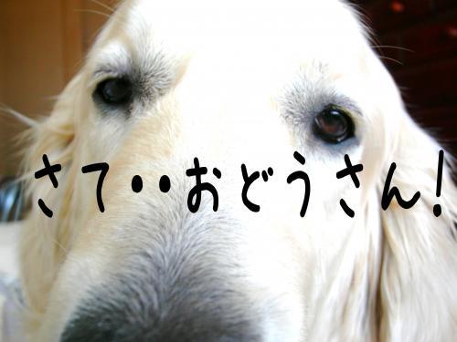 繧ォ繝・ご繝ウ4_convert_20110310161814