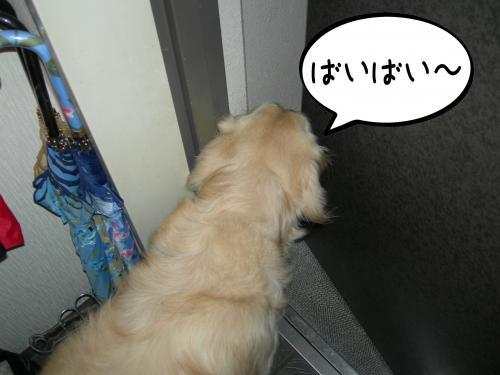 繧ォ繝・ご繝ウ2_convert_20110310161702