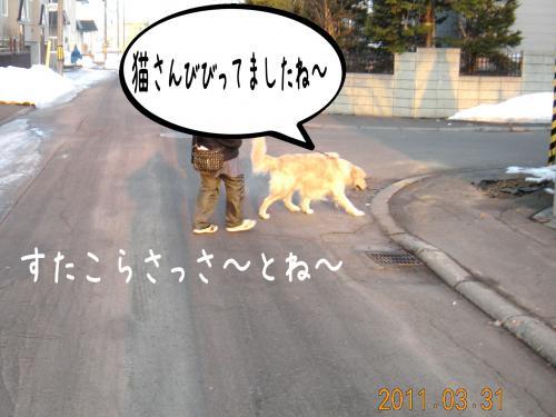 迪ォ4_convert_20110331184339
