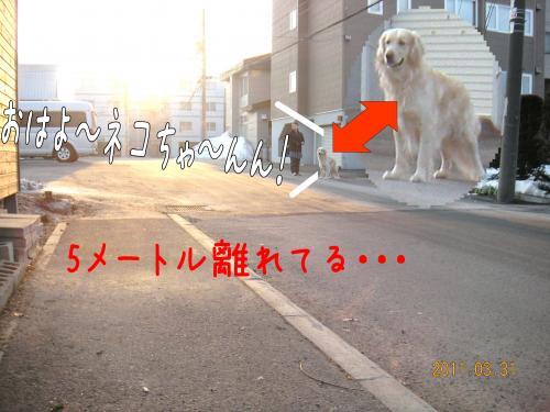 迪ォ1_convert_20110331184147