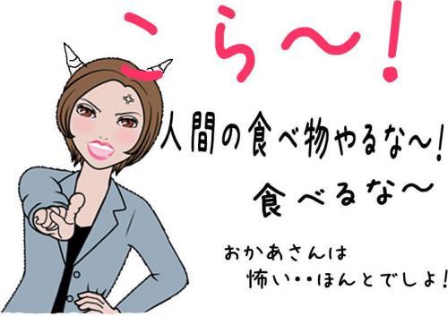 闌ィ蝓・_convert_20110409104918