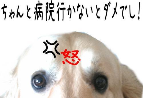 莉」逅・_convert_20110426160533