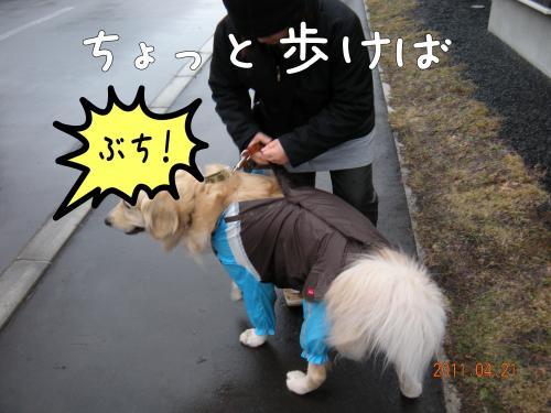 縺ゅa5_convert_20110427155201