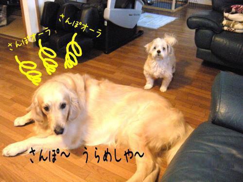 縺ゅa2_convert_20110427154933