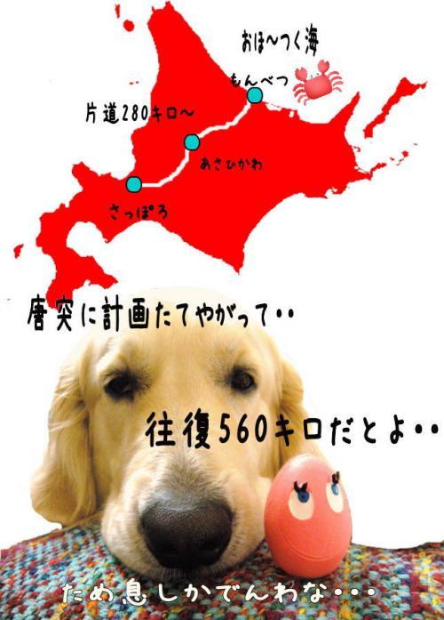 縺溘・1_convert_20110501000327