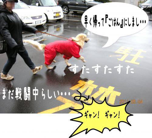 縺ゅa6_convert_20110504193006