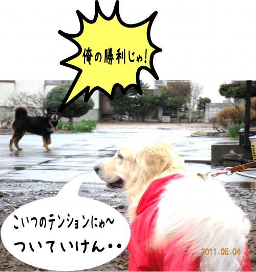 縺ゅa5_convert_20110504192941