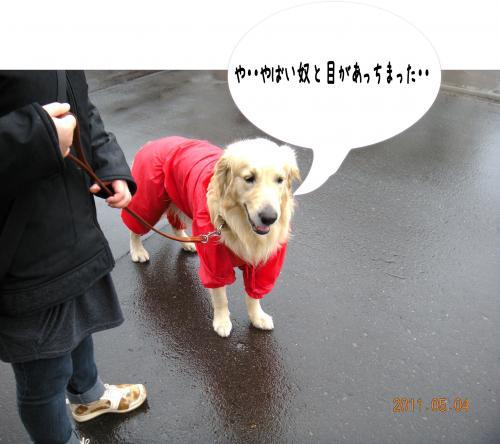 縺ゅa1_convert_20110504192513