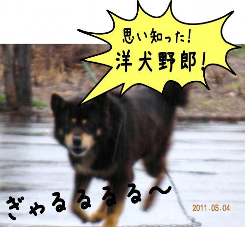 縺ゅa4_convert_20110504192914