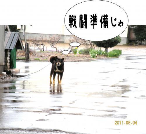 縺ゅa2_convert_20110504192759