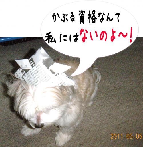 蟄蝉セ帙・譌・6_convert_20110506071032