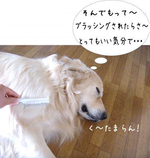 縺ッ繧・_convert_20110509101257