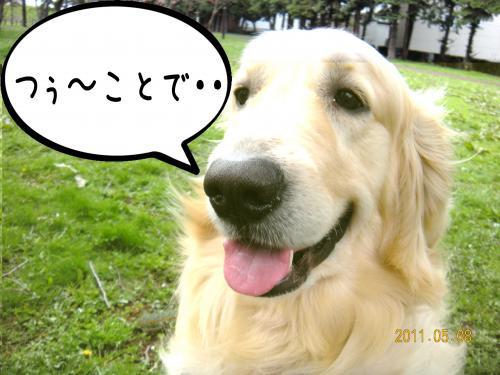 縺ッ繧・_convert_20110509100949