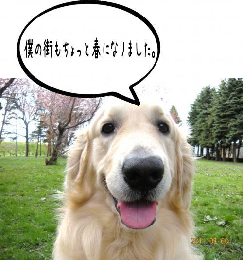 縺ッ繧・_convert_20110509100906