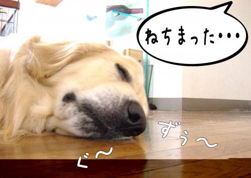 縺ッ繧・_convert_20110509101423