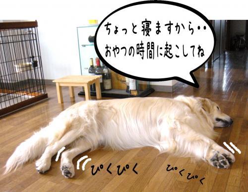 縺ッ繧・_convert_20110509101343