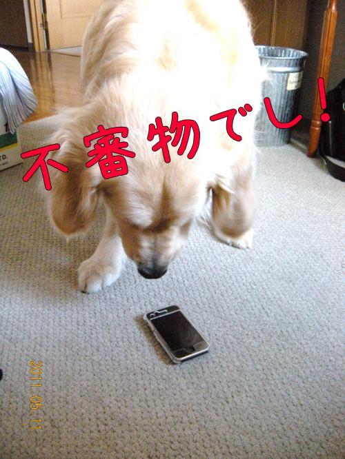 荳榊ッゥ迚ゥ3_convert_20110511133803