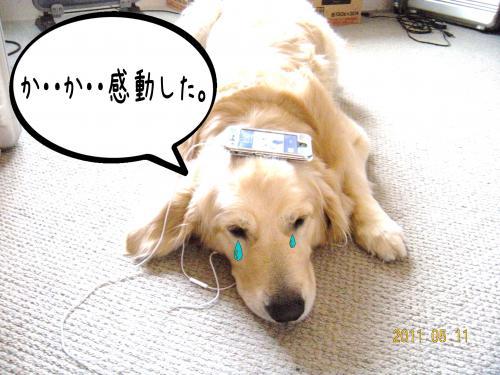 荳榊ッゥ迚ゥ7_convert_20110511134110