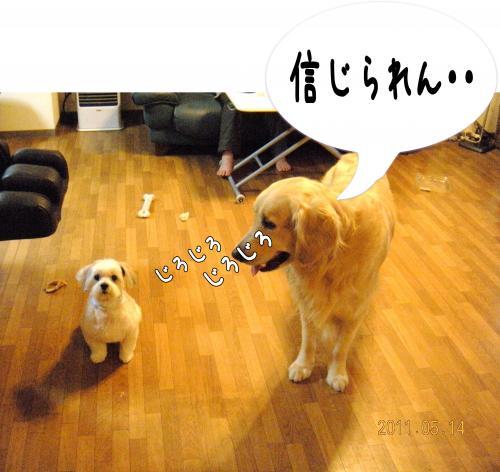 蠎雁ア・_convert_20110514213740