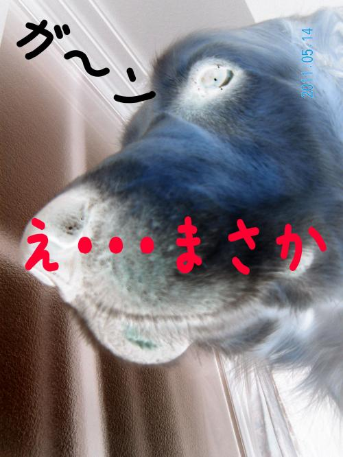 蠎雁ア・_convert_20110514213714