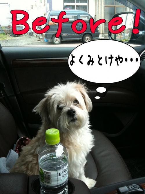 蠎雁ア・_convert_20110514213519
