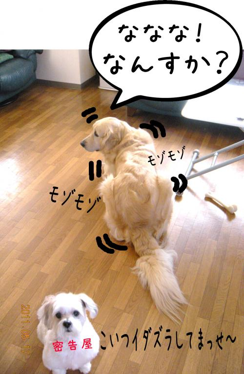 縺・◆縺壹i5_convert_20110517130752