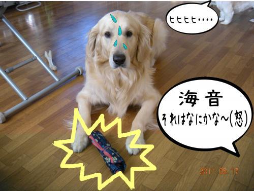 縺・◆縺壹i6_convert_20110517130835