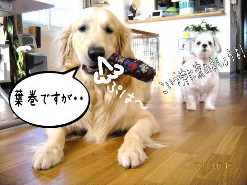 縺・◆縺壹i7_convert_20110517131010