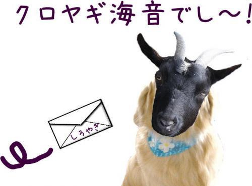 縺九∩3_convert_20110525144415