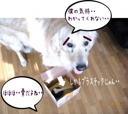蟇・サ・_convert_20110526133305