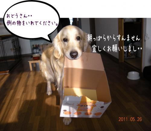 蟇・サ・_convert_20110526132745