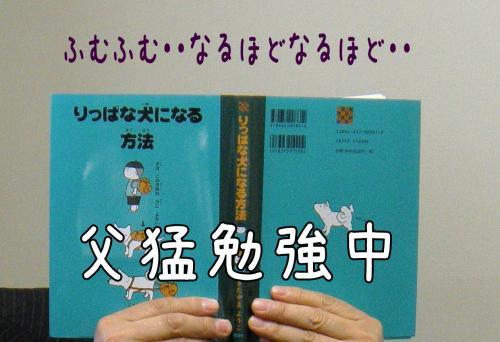 蟇・サ・_convert_20110526133618