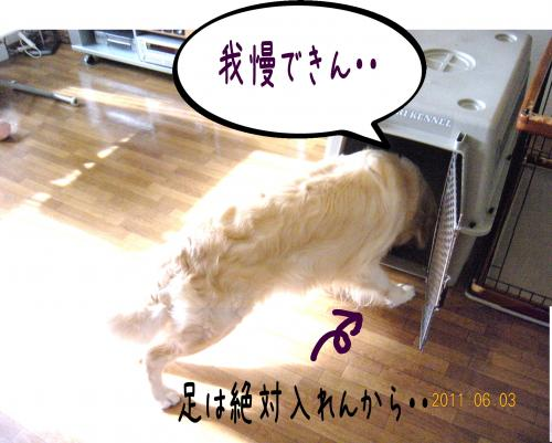 縺ェ縺・_convert_20110606155108