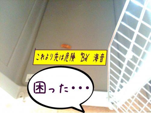 譛・_convert_20110615113941
