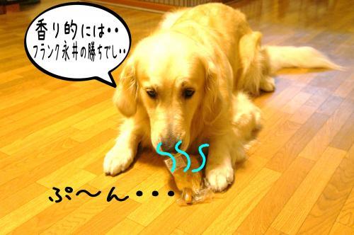 繝輔Λ繝ウ繧ッ4_convert_20110713182035