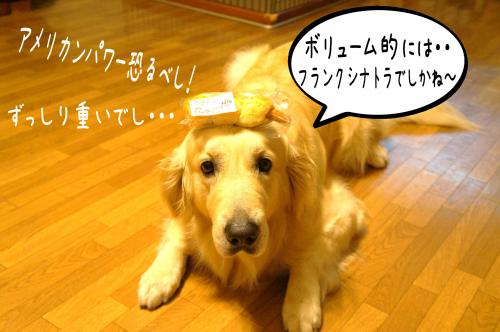 繝輔Λ繝ウ繧ッ5_convert_20110713182122
