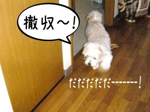 ・・_convert_20110803131522