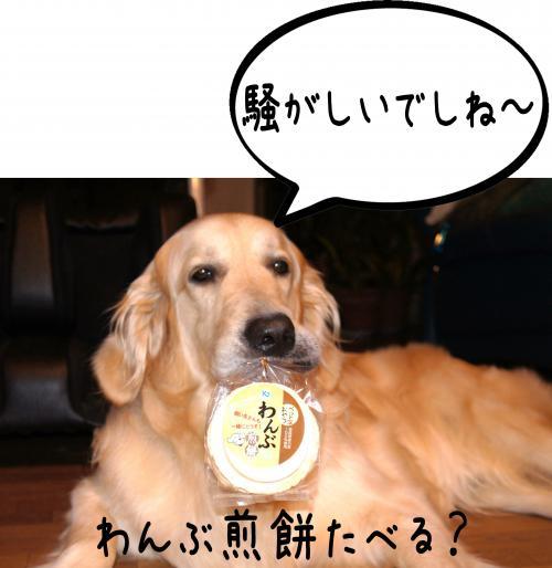 ・・_convert_20110803131616