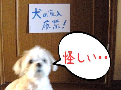 ・・_convert_20110803131318