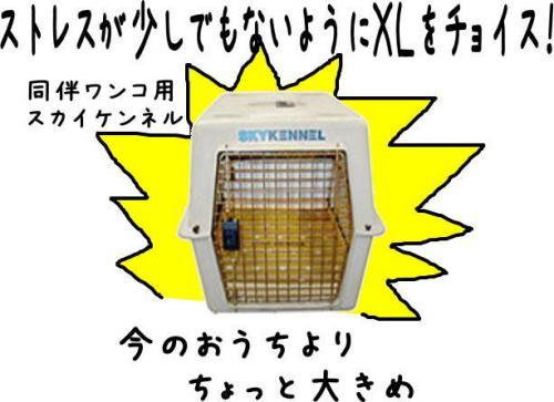 蟶ー繧・_convert_20110904212608