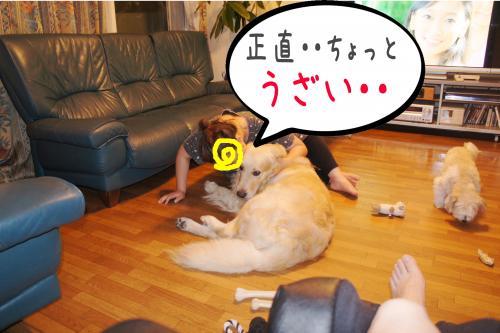 闍ヲ逞・_convert_20110905173952