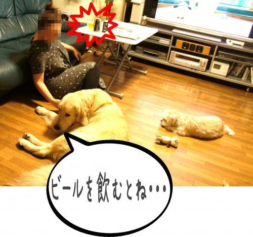 闍ヲ逞・_convert_20110905173812