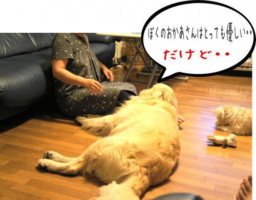 闍ヲ逞・_convert_20110905173731