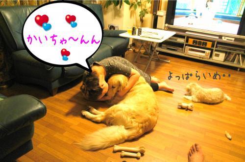 闍ヲ逞・_convert_20110905173904