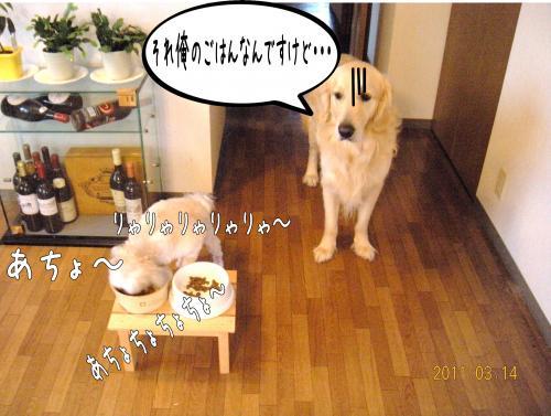 2_convert_20110415191644.jpg